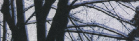 Grimble Grumble: Leaves Leader (Pehr, 2004)