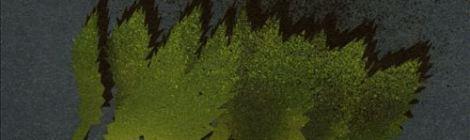 Palaxy Tracks: Cedarland (Peek-a-Boo, 2003)