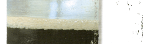 Robin Guthrie: Continental (Darla Records, 2006)