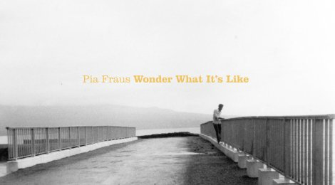 A Retrospective on Pia Fraus: Wonder What It's Like (Pia Records, 2001)