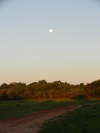 My last Full Moon rising in PY.