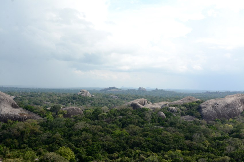 view from buddha rock