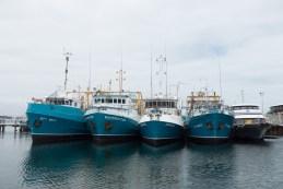Flota de pesquers