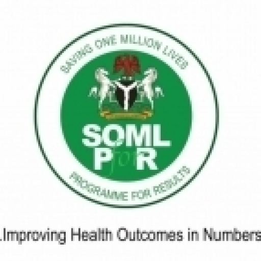 Experts Begin Data Collation On Child Nutrition, Reproductive Health In Nigeria