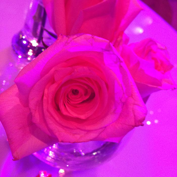 Beautygloss party 4