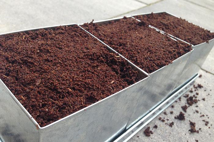 Keukenkruiden kweken - 2