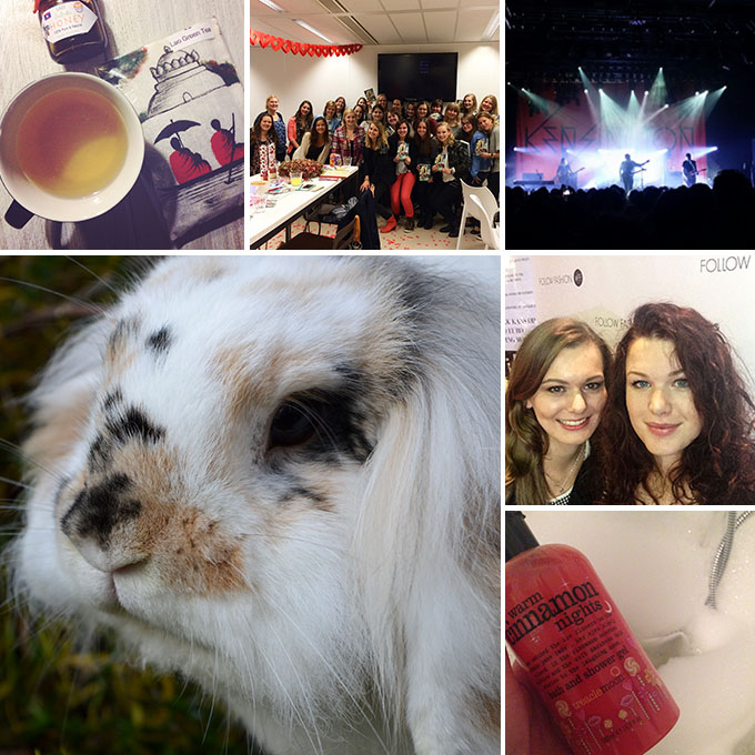 Collage_november