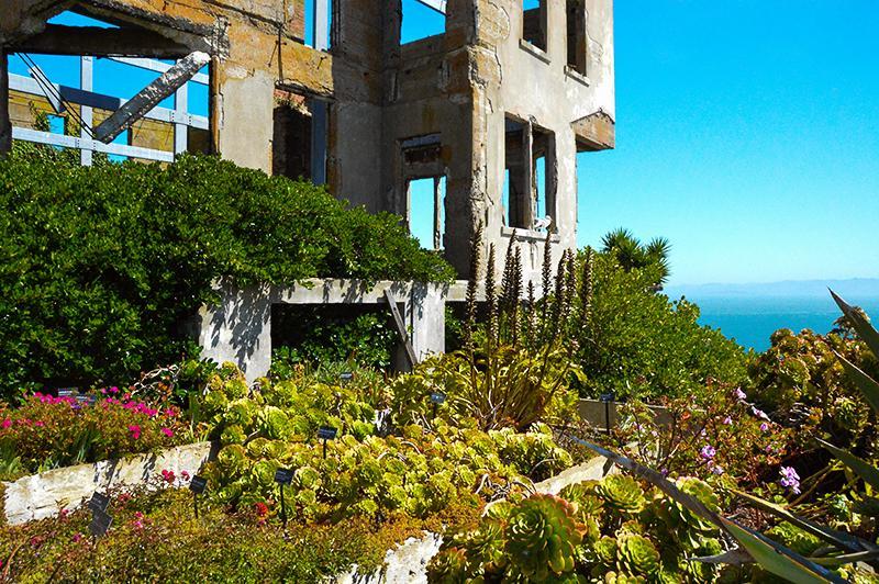 San Francisco Alcatraz 2