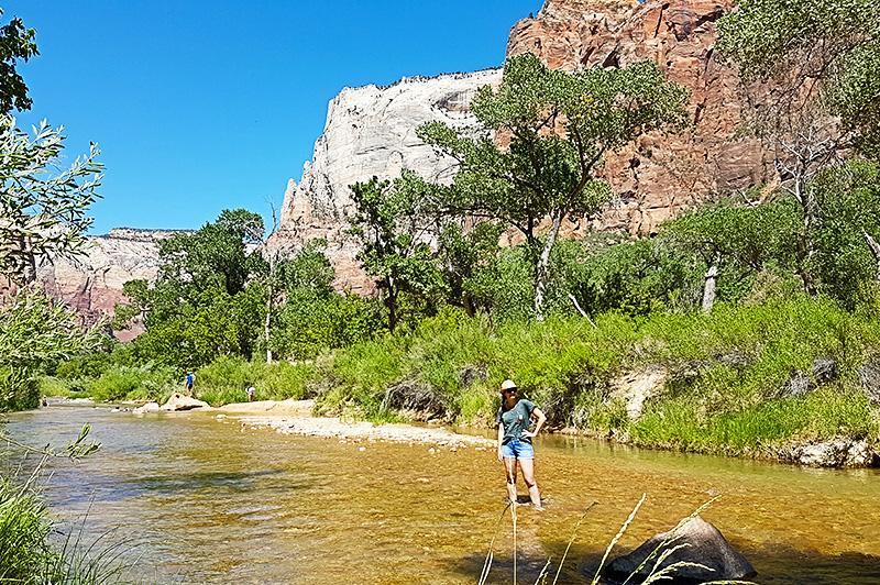 Zion national park Virgin River