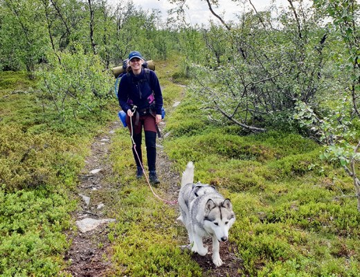 Cani-hiking in Lapland - Amy