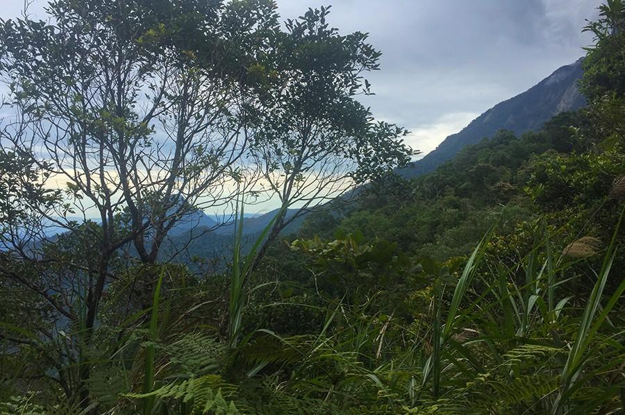 Mount Kinabalu - Borneo