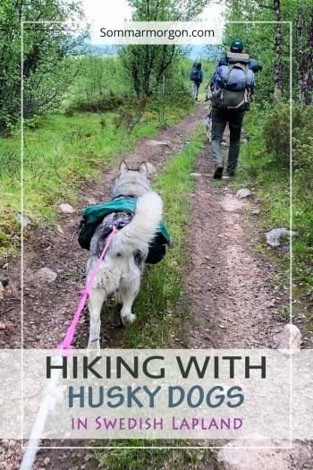 Pinterest wandelen met husky's