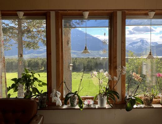 Slapen op een schapenboerderij in Noord-Noorwegen - sommarmorgon