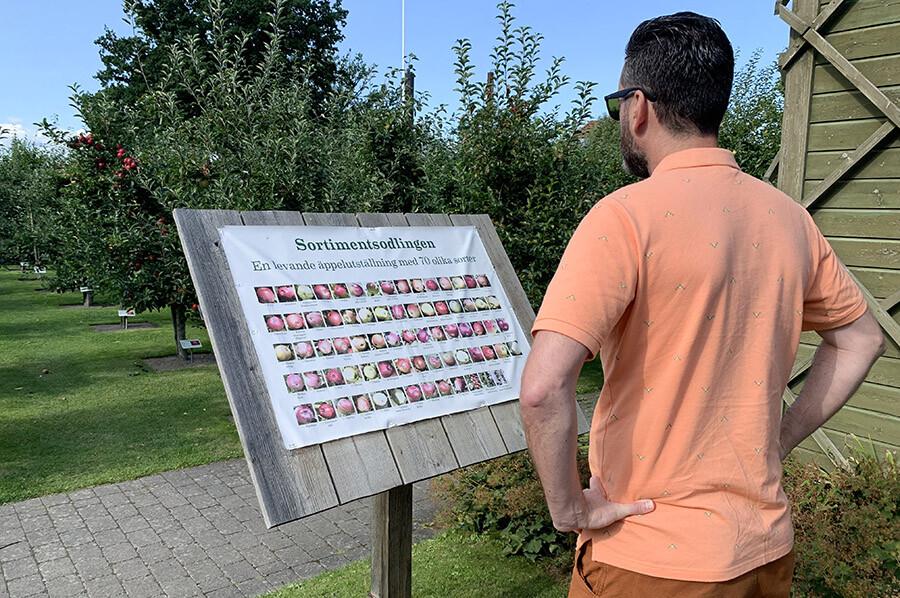 70 soorten appels in Kivik - sommarmorgon.com