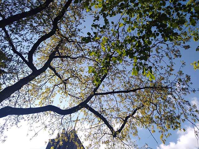 Spiritualität und Hören in der Stille
