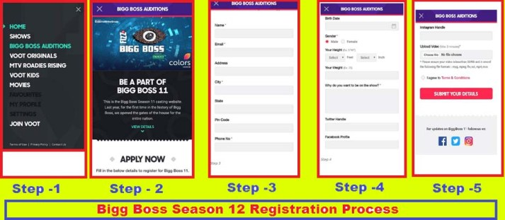 Bigg Boss 12 Registration Form