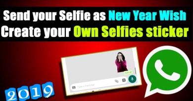 New year whatsapp sticker selfie