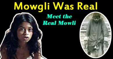 Dina Sanichar, The Real Mowgli Raised By Wolves in Jungle