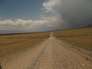 From Son Kul to Naryn (2)