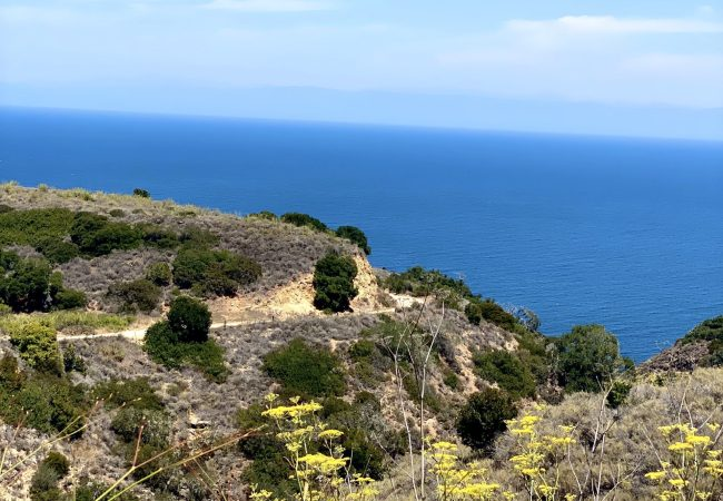 Photos: Backpacking and Camping Santa Cruz Island in Channel Islands National Park