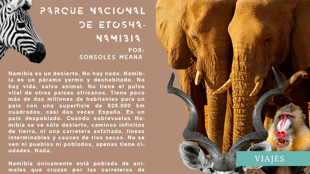 PARQUE NACIONAL DE ETOSHA EN NAMIBIA