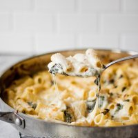 four cheese rigatoni with garlic kale