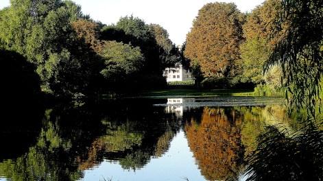 Morning in Flevopark