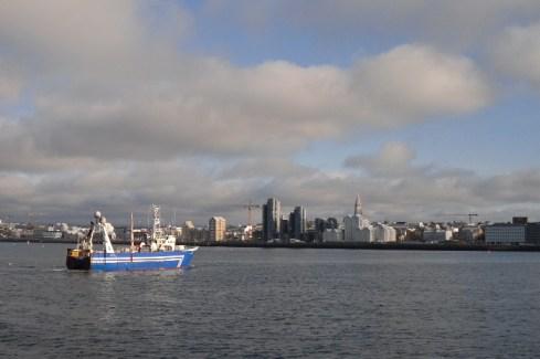 Al volver de ver ballenas en un barco ecologista, nos encontramos con estas vistas de Reikiavik con un barco pesquero de vuelta a puerto. En el barco nos contaron que comer ballenas no es tradición Islandesa, los que comenzaron con ello fueron Ingleses y americanos que buscaban atraer turismo. Los islandeses tratan de proteger a las ballenas lo mejor posible.