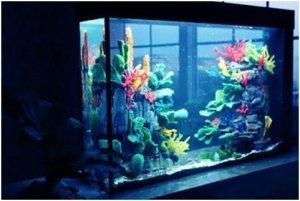 ideas-para-decorar-tu-acuario-en-casa