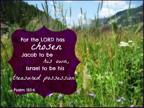 Psalm 135, 4