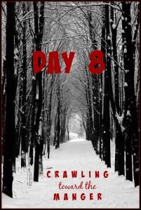 crawling toward the manger daily 8