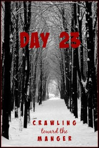 crawling toward the manger daily23