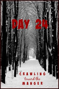 crawling toward the manger daily24