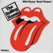 История песни Wild Horses – The Rolling Stones