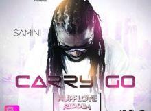 Samini - Carry Go (Nuff Love Riddim) (Prod. By JR)