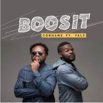 Cobhams Asuquo - Boosit ft. Falz