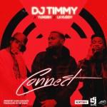 DJ Timmy - Connect ft. Yung6ix & LK Kuddy
