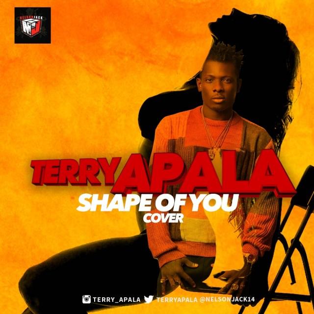 music-terry-apala-shape-ed-sheeran-cover