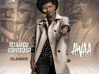 Lyrics: Cabo Snoop - Awaa Ft. Olamide
