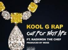 Music: Kool G Rap - Out For That Life Ft Raekwon