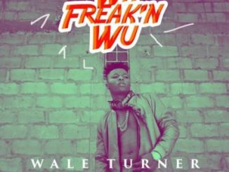 Music: Wale Turner - Wa Freak'n Wu ft. Pheelz