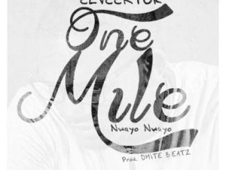 eLVeektor – One Mile (Nwayo Nwayo)