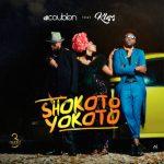 MP3 : DJ Coublon - Shokoto Yokoto ft. Klem
