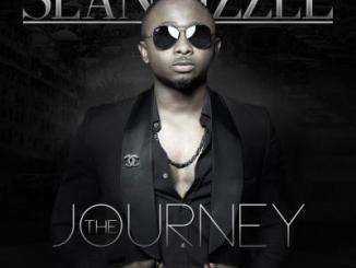 MP3 : Sean Tizzle - Take It