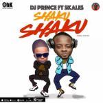 VIDEO: DJ Prince ft. Skales - Shaku Shaku