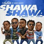 MP3: DJ Neptune x Larry Gaaga ft. Olamide, CDQ & Slimcase - Shawa Shawa