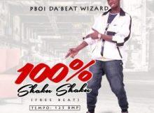 Freebeat: 100% Shaku Shaku (Prod By P BOI)
