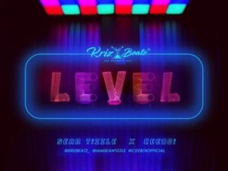 MP3 : Krizbeatz - Level Ft Sean Tizzle X Ceeboi