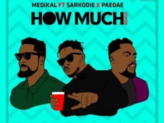 MP3 : Medikal - How Much (Remix) ft. Sarkodie & Paedae