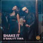 Lyrics: D'banj - Shake it ft. Tiwa Savage